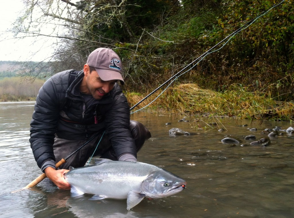 Anil, spey fish silver salmon