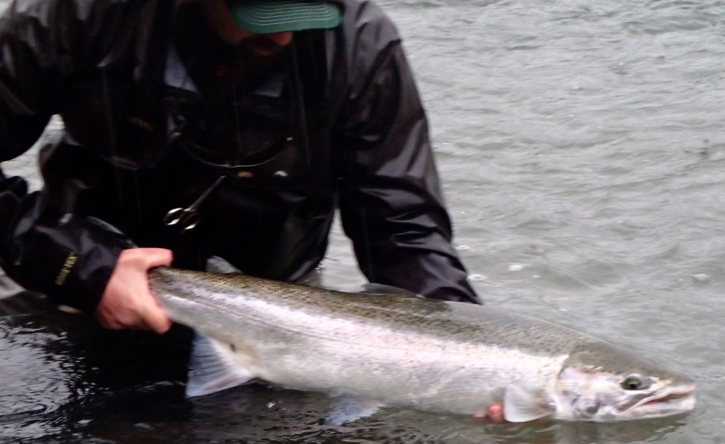 Rainy and windy often means fishy
