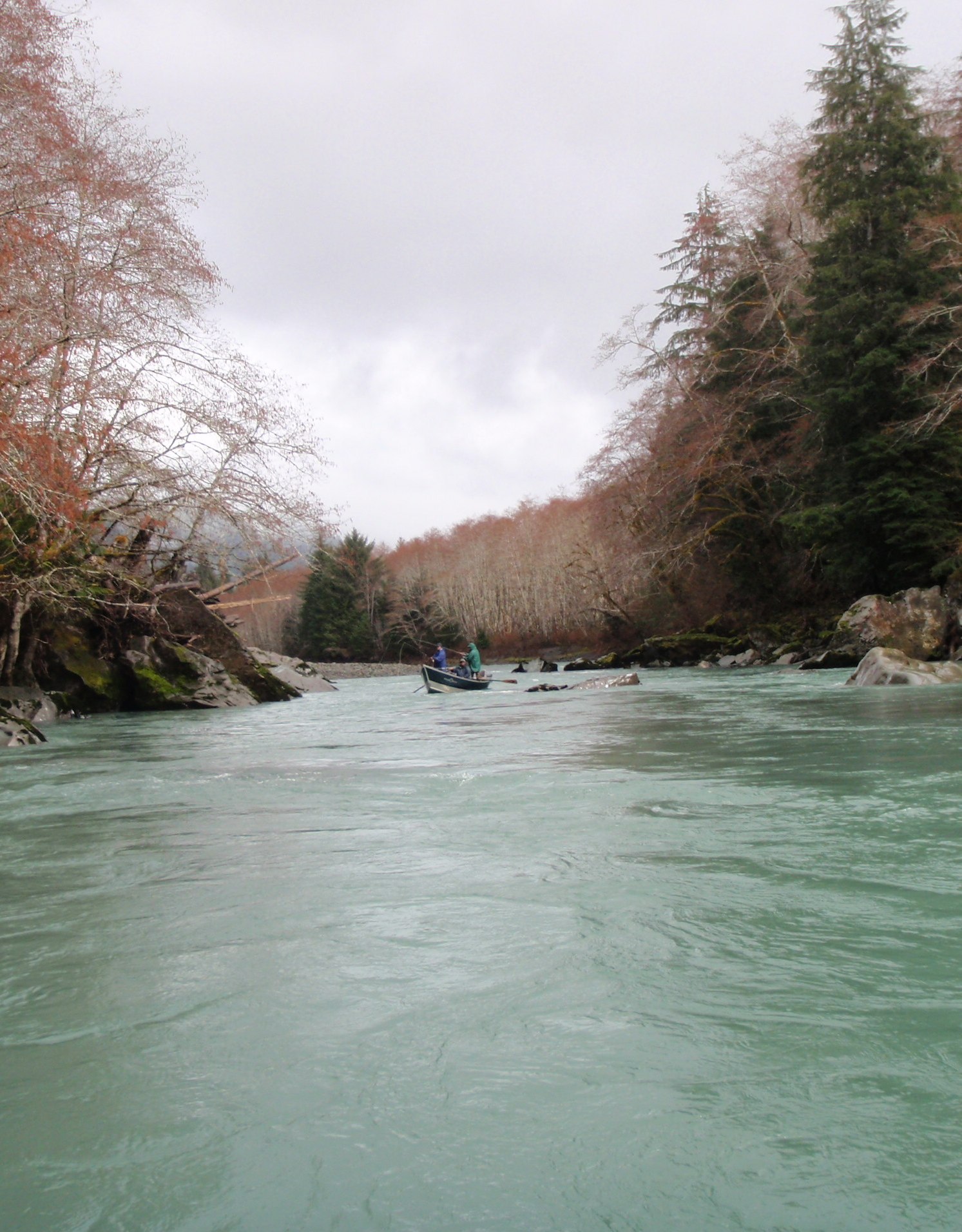 No hoh fishing report for Hoh river fishing report