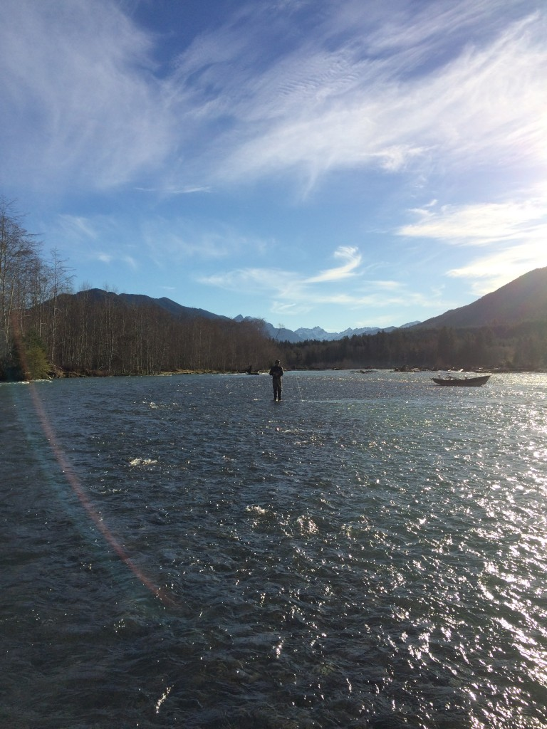 Was it all a dream? Winter steelhead fishing alone in the sunshine.