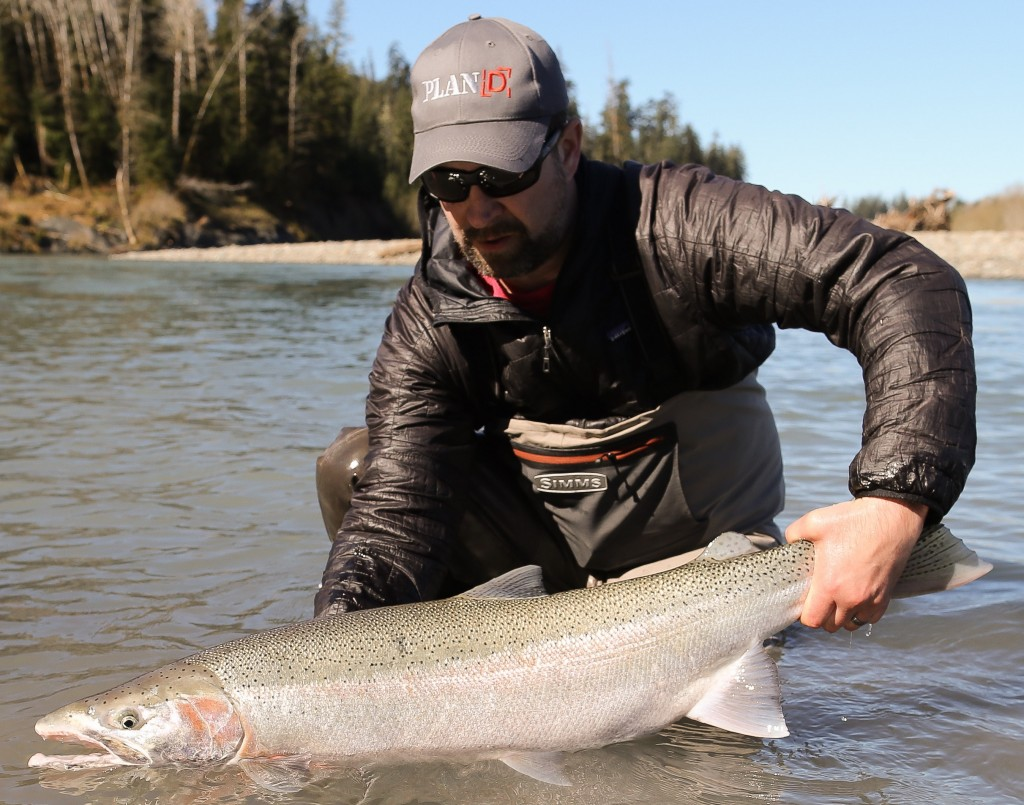 Plan D with a nice late winter steelhead