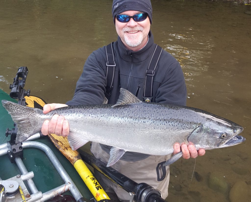 Perfect spring chinook
